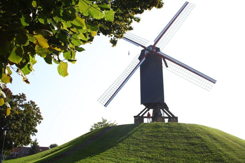 Brugge Mills