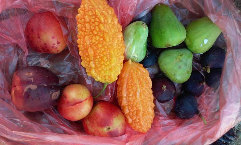 фрукты Грузии