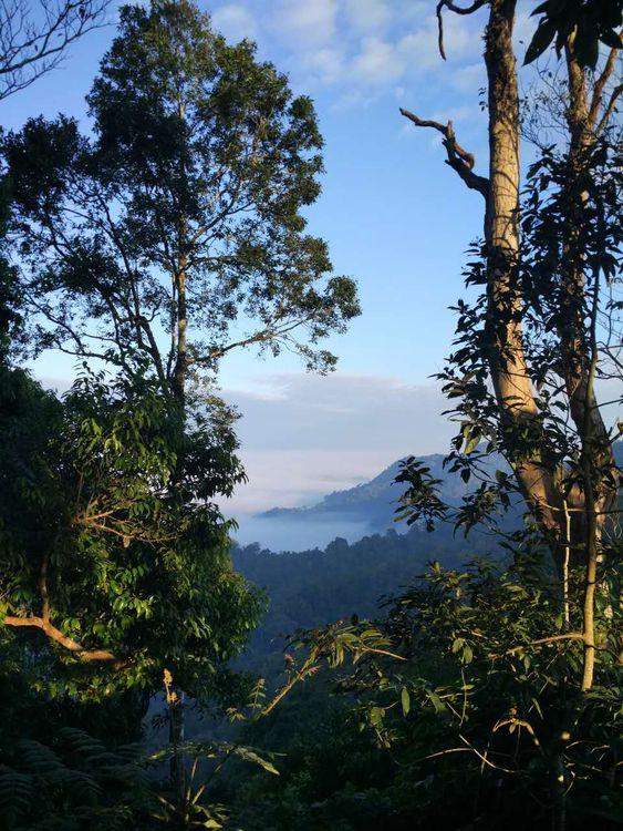 национальный парк Каенг Крачан в Таиланде