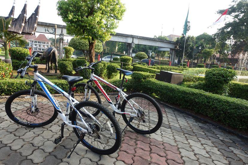 велосипеды на прокат очень приличные и стоят не очень дорого