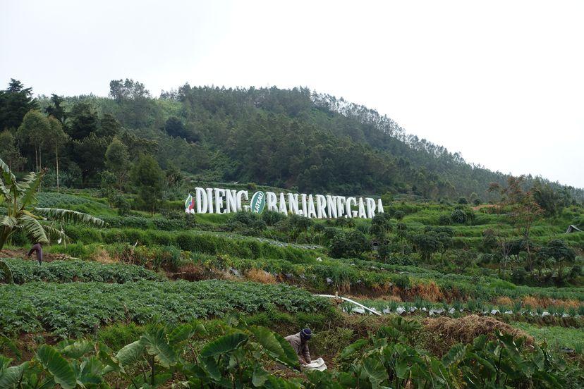 Плато Диенг Ява Индонезия