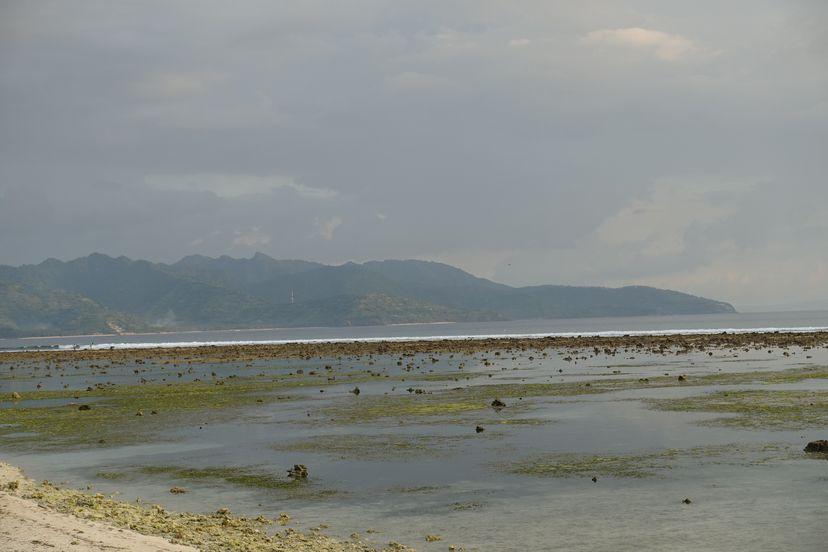 отлив на Гили Траванган