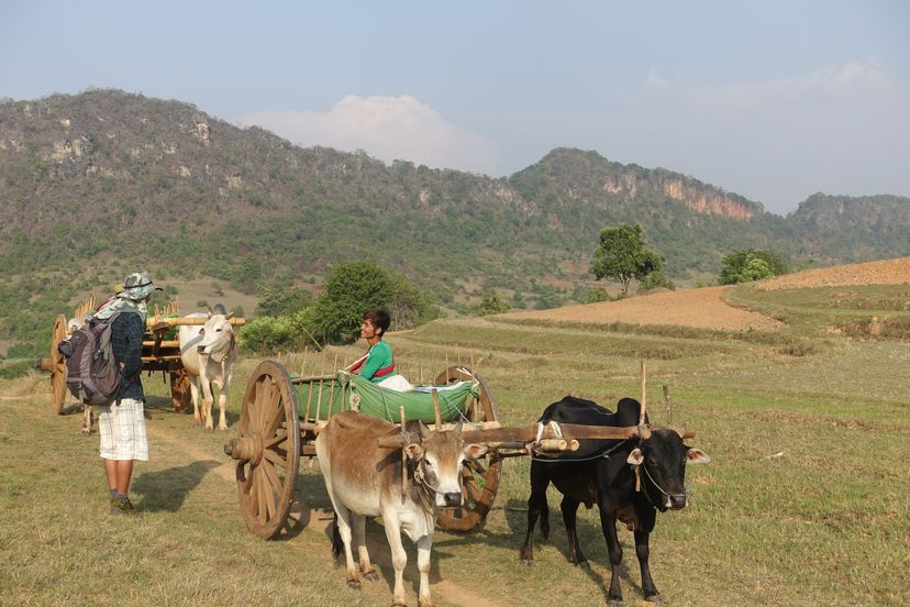 гид в Мьянме