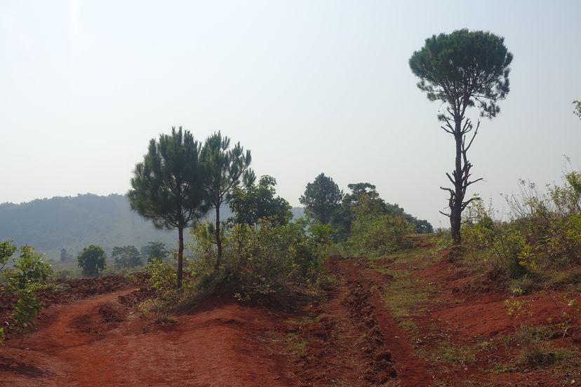 тропа в горах в Мьянме