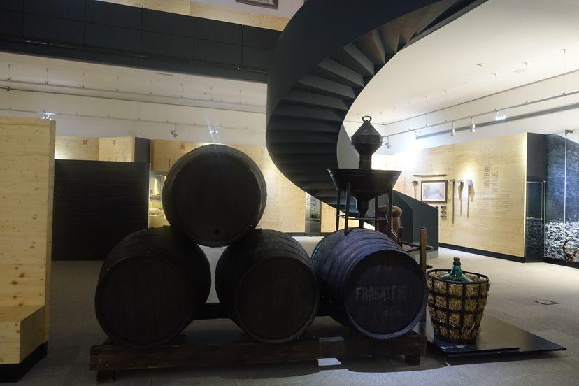 Музей Дуоро