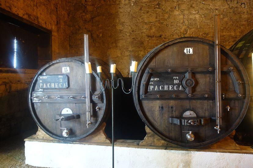 винодельня Квинта де Пачека
