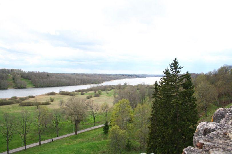 река и лес в Эстонии