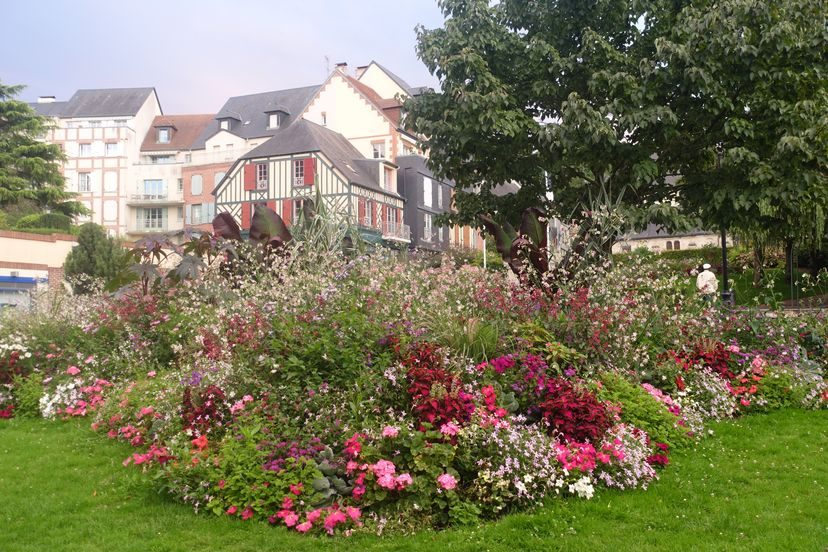 цветы в Онфлер