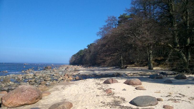 эстонский пляж