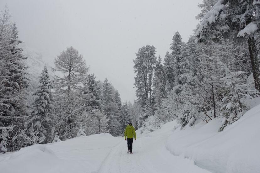 трекинг в Сульцтальм Sultzalm