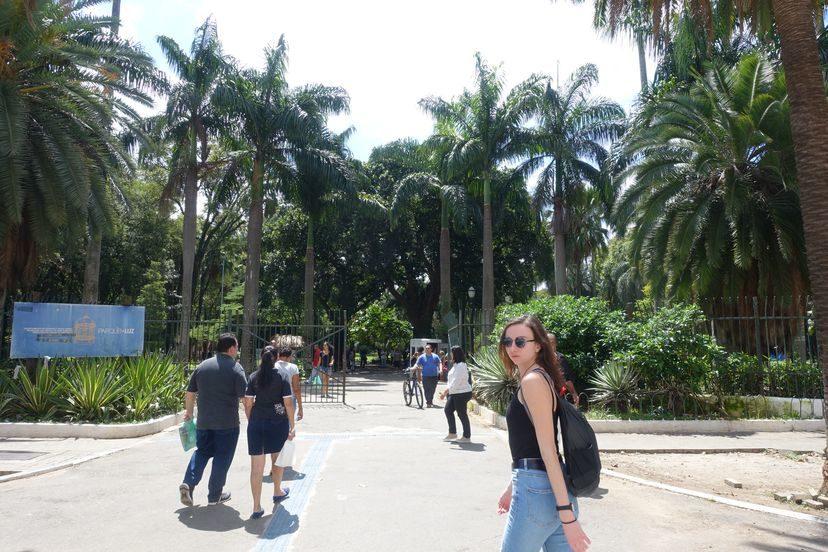 парк в Сан-Паоло