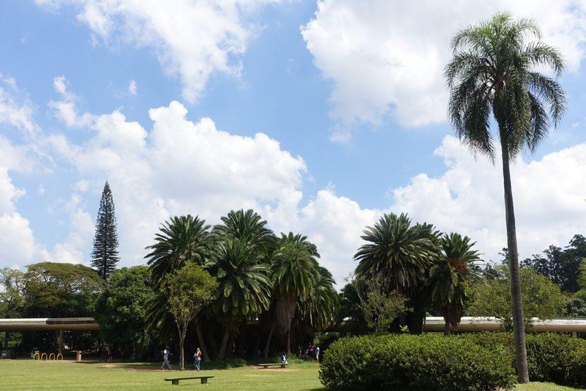 парк Ибапуэра