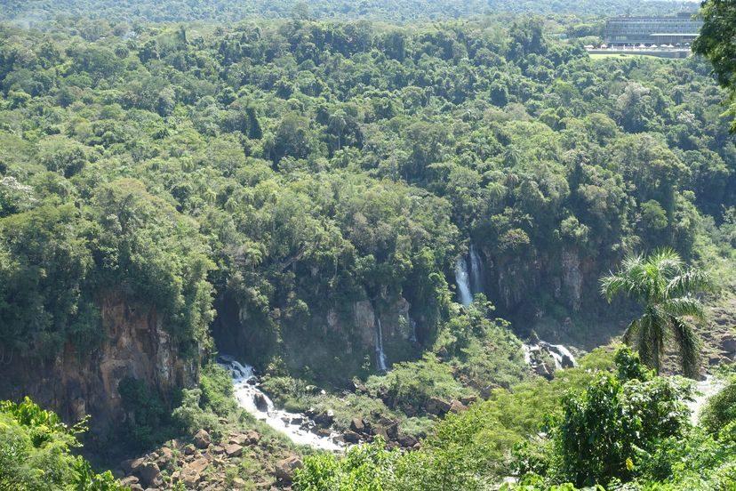 настоящие джунгли окружают водопады